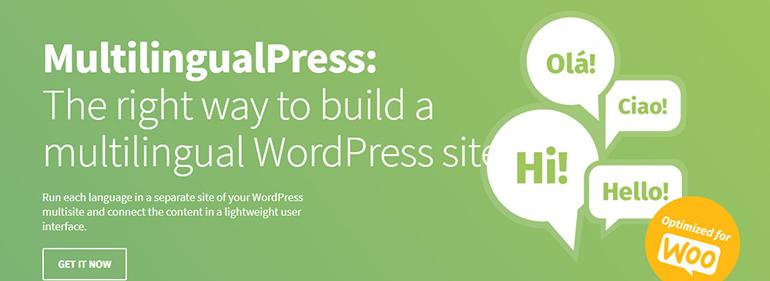 MultilingualPress-WordPress-Multilingual-Plugins