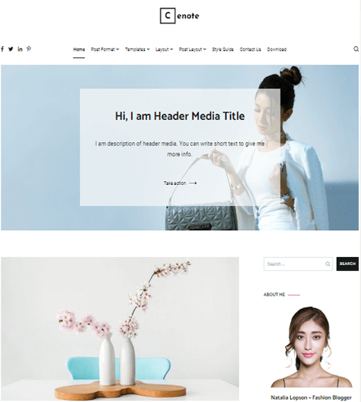 Cenote Best Free Blogging Theme