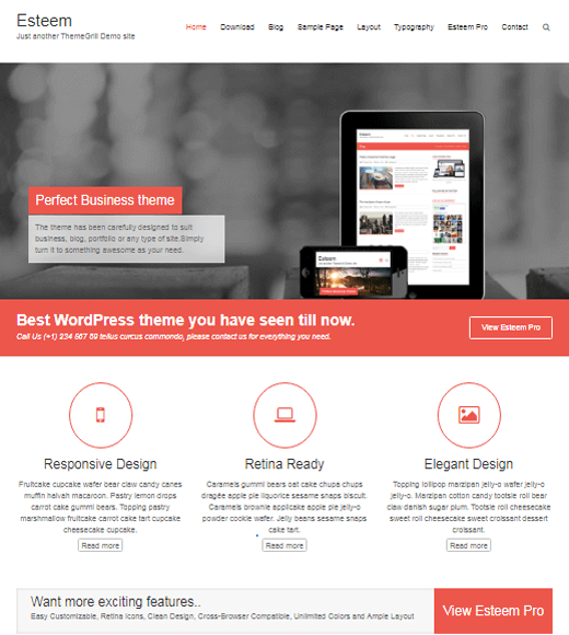 Esteem Simple Free Responsive Theme for Business
