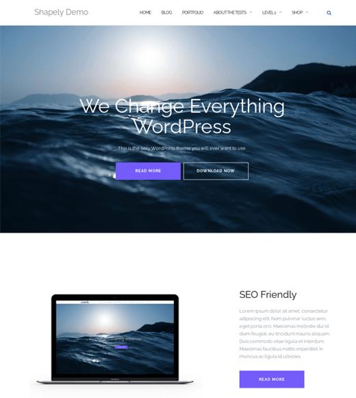 Shapely Free Responsive WordPress Theme