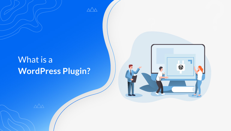 What is a WordPress Plugin Beginner's Guide