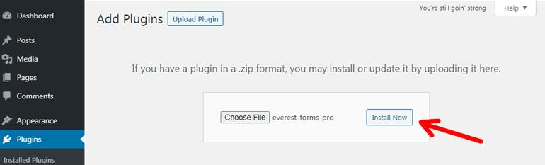 Installing Premium Plugin