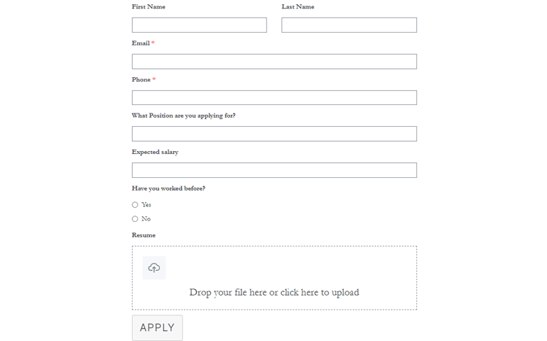 Preview of Job Application Form