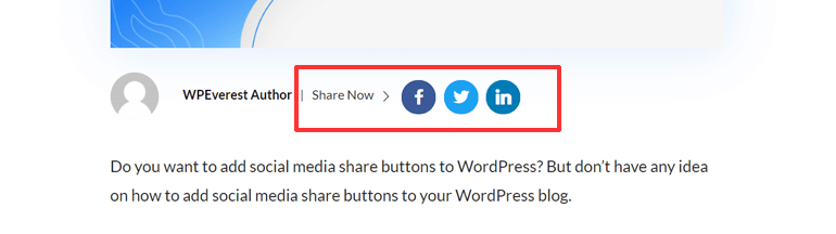 Social Share Buttons Example on WPEverest Blog