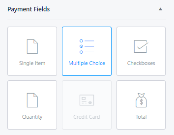 Payment-Fields-Multiple-Choice
