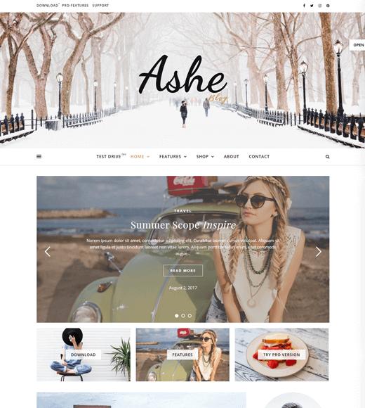 Ashe Blog Theme Demo