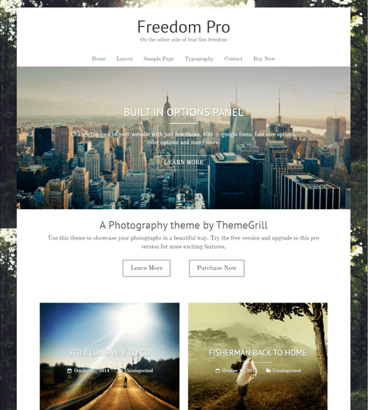 Freedom Blog Theme Demo