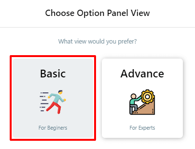 Basic or Advanced View in AMP for WP