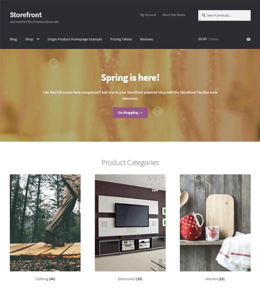 StoreFront WordPress Theme Demo
