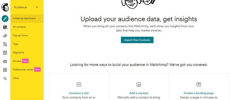 ConvertKit vs MailChimp Audience