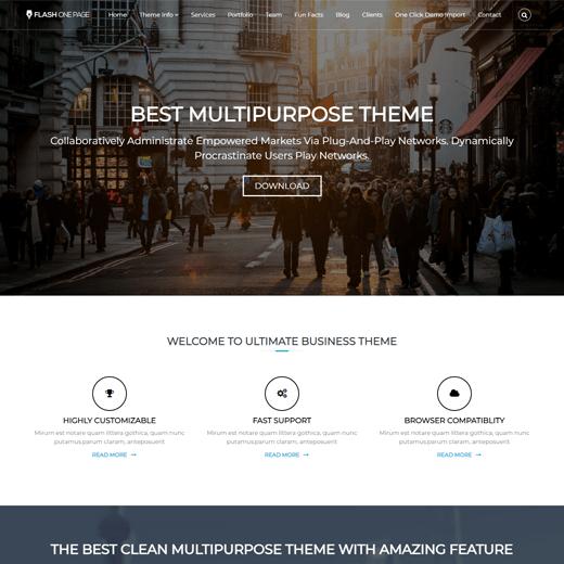 Flash Best Free Customizable Theme